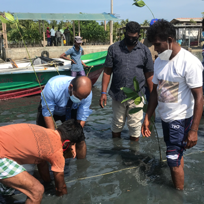 GA planting the first mangrove sapling with community members looking on