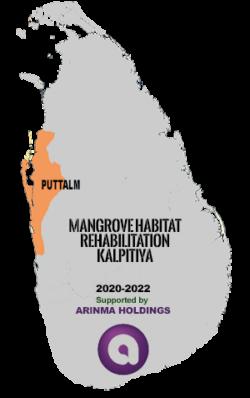 Rehabilitating mangrove habitats in Kalpitiya