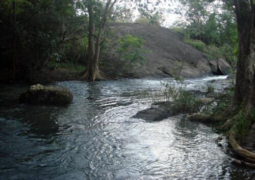 The dark overhang of  virgin forests give the Kalu Ganga its name